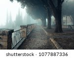 a misty morning autumn... | Shutterstock . vector #1077887336