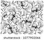 fresh fruits  illustration... | Shutterstock .eps vector #1077902066