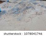 builder  fine cement floor  | Shutterstock . vector #1078041746
