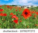 mer les bains   normandy  ... | Shutterstock . vector #1078197272