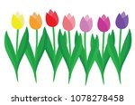 set of colorful tulips isolated ... | Shutterstock .eps vector #1078278458