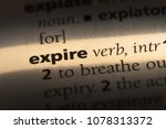 expire word in a dictionary.... | Shutterstock . vector #1078313372
