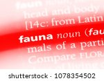 fauna word in a dictionary.... | Shutterstock . vector #1078354502