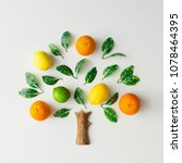 tree made of citrus fruits ... | Shutterstock . vector #1078464395