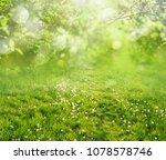 spring grass background | Shutterstock . vector #1078578746