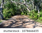 Dirt Road Background With...
