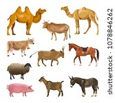 set of farm animals. vector... | Shutterstock .eps vector #1078846262