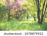 green nature background | Shutterstock . vector #1078879922