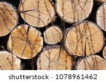 background of firewood  wood... | Shutterstock . vector #1078961462