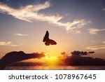 Stock photo butterfly takes flight from a human hand 1078967645