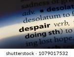 despair word in a dictionary.... | Shutterstock . vector #1079017532