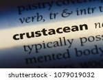 Small photo of crustacean word in a dictionary. crustacean concept