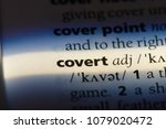 Small photo of covert word in a dictionary. covert concept