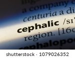 Small photo of cephalic word in a dictionary. cephalic concept