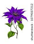 hand drawn illustration of... | Shutterstock . vector #1079037212