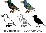 set of different starlings on... | Shutterstock .eps vector #1079084042