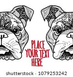 the head of a dog. english...   Shutterstock .eps vector #1079253242