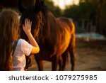 Beautiful Girl Stroking A Horse