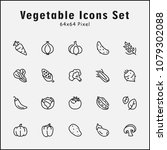 thin line icons set of... | Shutterstock .eps vector #1079302088