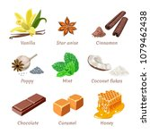 set of vector culinary spices ... | Shutterstock .eps vector #1079462438