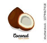 coconut in cartoon style. nut...   Shutterstock .eps vector #1079467418