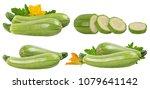 fresh vegetable marrow isolated ... | Shutterstock . vector #1079641142