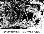 black and white liquid texture. ...   Shutterstock .eps vector #1079667308