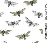 vector illustration. cicadas .... | Shutterstock .eps vector #1079696492