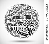 gmo and organic products. cloud ... | Shutterstock .eps vector #1079703665