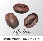 set of shiny 3d realistic fresh ...   Shutterstock .eps vector #1079742116