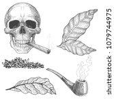 Tobacco Set Sketch  Tobacco...