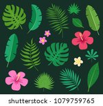 set of tropical colorful exotic ... | Shutterstock .eps vector #1079759765
