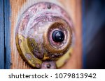 Small photo of horizontal macro image of 1900's push button buzzer. Details of brass and tarnish copper and wood