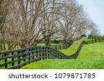 Long Black Equine Fence  Chewe...
