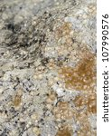 lichen on full frame abstract stone surface - stock photo