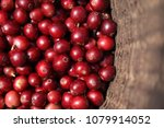 close up of red berries coffee ... | Shutterstock . vector #1079914052