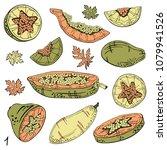 papaya sketch set. tropical...   Shutterstock .eps vector #1079941526