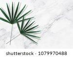 green tropical leaves on white... | Shutterstock . vector #1079970488