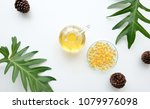 cosmetic nature skincare and... | Shutterstock . vector #1079976098