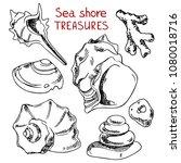 sea shore shells and stones  a...   Shutterstock .eps vector #1080018716
