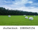 hey bales on green grass field | Shutterstock . vector #1080065156