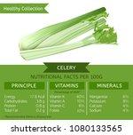 the celery health benefits.... | Shutterstock .eps vector #1080133565