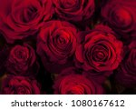 beautiful red red roses... | Shutterstock . vector #1080167612