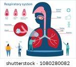 human respiratory system... | Shutterstock .eps vector #1080280082
