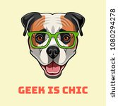 american bulldog geek. smart... | Shutterstock .eps vector #1080294278