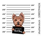 yorkshire terrier criminal.... | Shutterstock .eps vector #1080294626