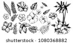 tropical flowers and palm trees.... | Shutterstock .eps vector #1080368882