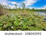a beautiful lake in danube... | Shutterstock . vector #108043592