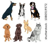 sitting dogs collection... | Shutterstock .eps vector #1080519572