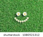 daisies smile on green grass ... | Shutterstock . vector #1080521312